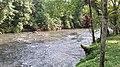 Río Puyo, Pastaza.jpg