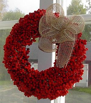 Wreath of Rowan berries (Sorbus aucuparia)