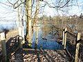 RK 1701 P1100683 Taschensee.jpg