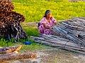 Raíces guajiras a flor de piel.jpg