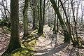 Rackenford, the Two Moors Way - geograph.org.uk - 393662.jpg