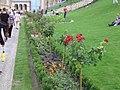 Renaissance Garden, Castle Bazaar, 2014 Budapest.jpg