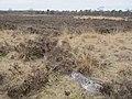 Resten vliegveld Ermelosche Heide (31177508670).jpg