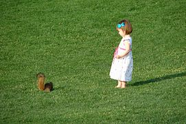 RetouchedGirlAndSquirrel-1980.jpg