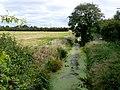 Rhyne near Pawlett Somerset - geograph.org.uk - 1500070.jpg