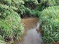 Ribeirão do Agudo chegando em Morro Agudo - Rod. Altino Arantes SP-351 - panoramio.jpg