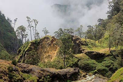 Rinjani-Lombok near Hot Springs 2017-08-07.jpg
