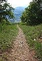 Riserva naturale Tsatelet trail.jpg
