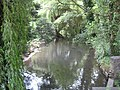 River Purwell at its confluence with the River Hiz - geograph.org.uk - 1978804.jpg