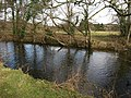 River Teign below Chudleigh Knighton - geograph.org.uk - 1172934.jpg
