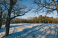 Riverside Park Ski Trail, Saint Cloud, Minnesota - Winter (24163875066).jpg
