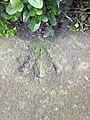 Rivet at Todmorden, Cemetery, Burnley Road.jpg