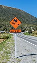 Road sign at Lewis Pass NZ.jpg
