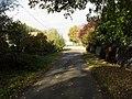 Road through Grafton - geograph.org.uk - 1566045.jpg