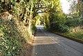 Road to Horsmonden - geograph.org.uk - 1025176.jpg