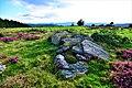 Rochers sur le puy de Viossanges.jpg