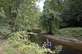 Rock Creek Park, NW, Washington, D.C LCCN2010641462.tif