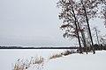 Rock Lake - Saint Croix State Forest, Minnesota (38738204694).jpg