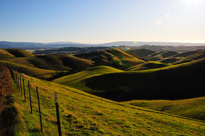 Rolling green hills in the East Bay Area, Cali...