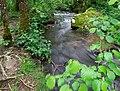 Ruisseau des Palanges (11).jpg