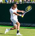 Ryan Harrison 3, 2015 Wimbledon Qualifying - Diliff.jpg