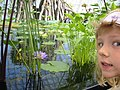 San Francisco - Conservatory of Flowers - 20031011150554.jpg
