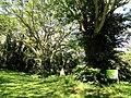 San Juan Botanical Garden - DSC07032.JPG