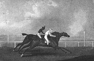 Hannibal (horse) - Sancho (foreground) leading Hannibal in a 26 July 1805 match race held at Brighton. This was the last start of Hannibal's racing career.