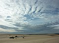Sandhill country in Lake Mungo National Park, New South Wales.jpg