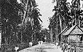 Santa Maria Road, Zamboanga (1923).jpg