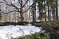 Sarkanās armijas brāļu kapi Ķemeros (112 karavīri) WWII, Jūrmala, Latvia - panoramio (2).jpg