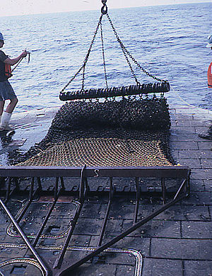 Fishing dredge - Image: Scallop dredge
