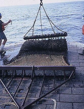 Fishing dredge - Image: Scallop dredge