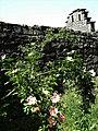 Schloßmauer - panoramio.jpg