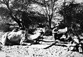 Schutztruppe in Deutsch-Südwest (heute Namibia), 1910-1914 - 2011-02-17 041.jpg