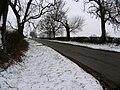 Seaton Road looking westwards - geograph.org.uk - 335392.jpg