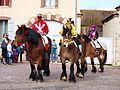 Sergines-FR-89-carnaval 2017-chevaux-12.jpg