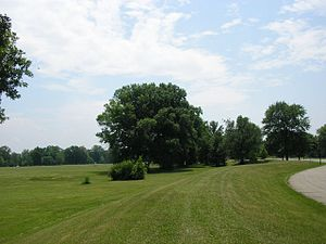 Shawnee Park - Shawnee's Great Lawn