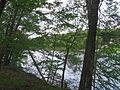 Shepaug River impounded 102.JPG