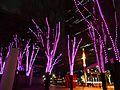 Shinjuku i-Land Tower- Christmas Illumination 2013 (15593838877).jpg