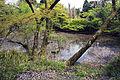 Shojiji Kyoto Japan08s3s4592.jpg