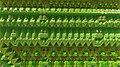 Sierpinski 4D x T Menger Fold x T Rotation 4D OpenCL 5528574174 32K.jpg
