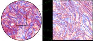 Coherent turbulent structure - Image: Skeleton turbulence