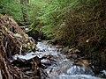 Small stream in the Taunus.jpg
