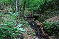 Smolarski vodopad 38.JPG