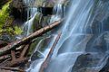 Snake Falls (6444797589).jpg