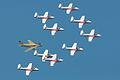 Snowbirds with Hawk One (3898092751).jpg