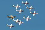Snowbirds with Hawk One (3898092751).jpg