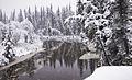 Snowy River (23044277605).jpg