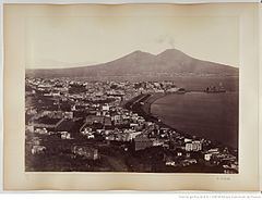 Sommer, Giorgio (1834-1914) - n. 4005 - Panorama dal Vomero (Naples).jpg